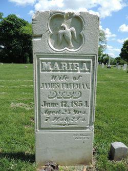 Marie Antoinette <I>Marble</I> Freeman
