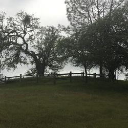 Milburn Family Cemetery