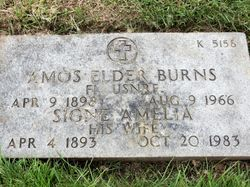 Amos Elder Burns