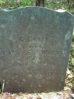 Guy Ellis Watson
