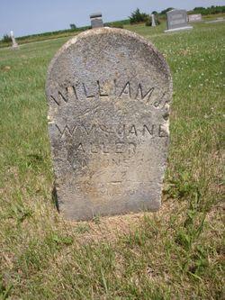 William Aller Jr.