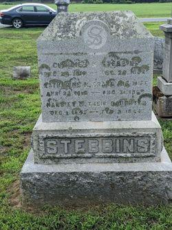 Chalmer Willard Stebbins