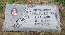 Maria Del Rosario Alvarado