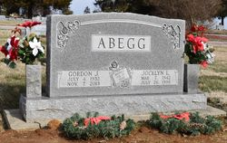 Gordon J Abegg