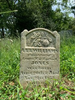 Ann Williams Jones