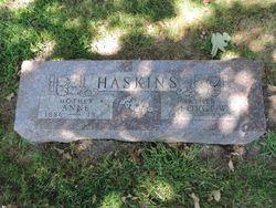 George Willard Haskins