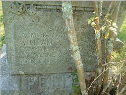 Abram M. Feltus