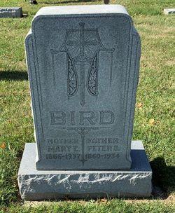 Peter Owen Bird