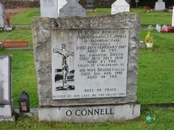 Breda O'Connell