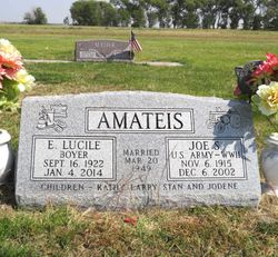 Joe S Amateis