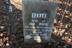 Sarah <I>Winfield</I> Davis