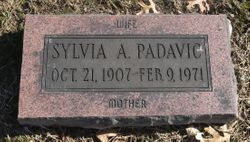 Sylvia A. <I>Johannes</I> Padavic