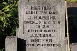 Jan Hendrik Abbink