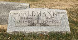 Herman Henry Feldmann