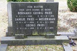 Georg Fries