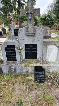 Johannes Hendrikus Snoeijenbos