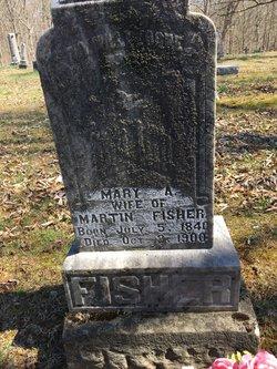 Mary Ann <I>Price</I> Fisher