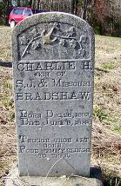 Charlie H Bradshaw