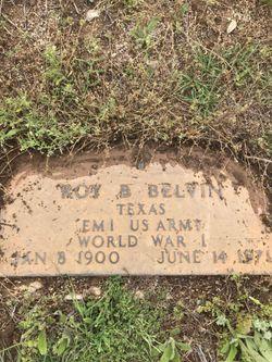 Roy Basil Belvin
