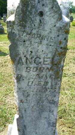 Catherine S. Angel