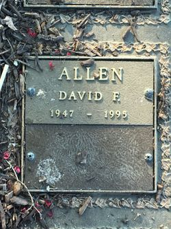 David F. Allen