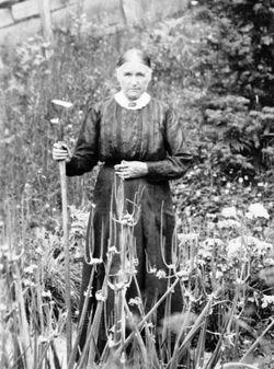 Alice Lavina <I>Fulk</I> Fulks