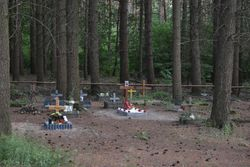 Hundefriedhof Barsberge (Pet Cemetery)