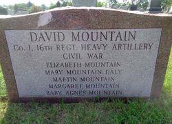 David Mountain