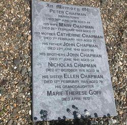 Mary Ellen <I>Hayes</I> Chapman