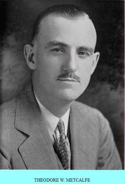 Theodore Walter Metcalfe
